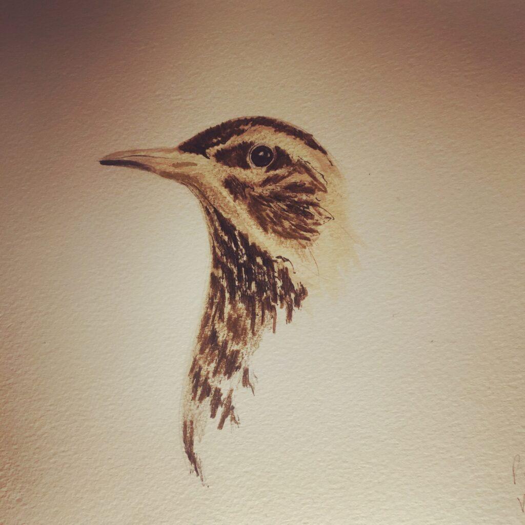 tara bird print